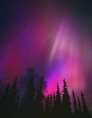 aurora magic in the sky