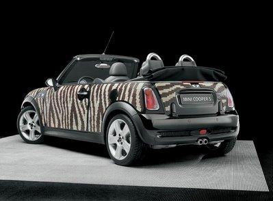 art of decorating car body