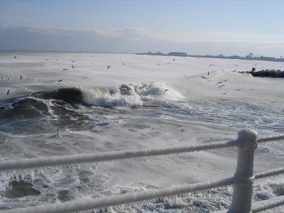 cold sea at antarctic