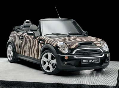 toughen the mini cooper body with decorative mosaic