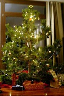 unser weihnachtsbaum 2006 - klicken zum vergrößern