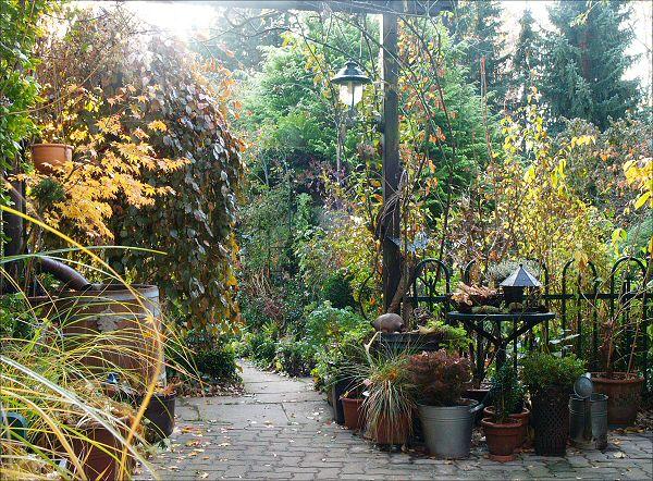 Dekorativer Garten mit Fliederspeer
