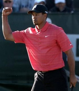 Tiger turns 30 and his wife is freakin hot