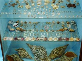 Natural History Museum of Ligourio