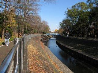 Zenpukuji Koen Park, Suginami ward, Tokyo.