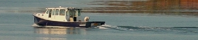 Fisherman on Stanley River