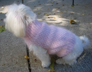 Cashmere and angora dog sweater