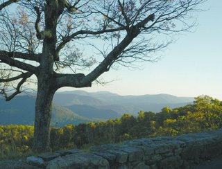 Skyline Drive, Shenandoah National Park, October, 2006, © 2007