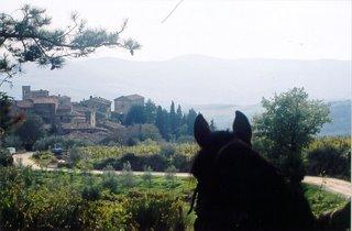 Horseback View of Volpaia,  Italy