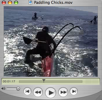 Paddling Chicks