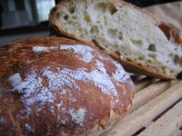 photo of no knead bread
