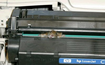 mouse stuck in printer hewlett packard