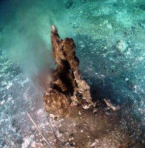 An approximately 2-foot-tall chimney on Axial Volcano vents hot hydrothermal fluids like the ones collected by University of Washington researchers in the search of archaea capable of fixing nitrogen at high temperatures. Credit: Courtesy of the NOAA Vents Program (Evolution Research: John Latter / Jorolat)