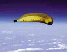 www.geostationarybananaovertexas.com