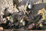 جنود إسرائيليون مصابون في جنوب لبنان