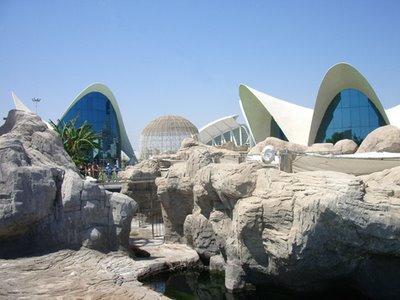 Perdida en valencia il museo oceanografico for Oceanografico valencia