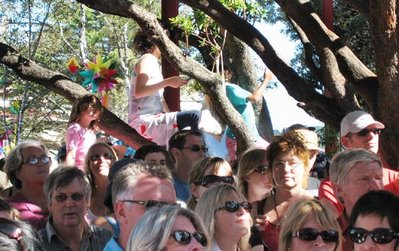 Ukelele Orchestra fans looking for a good viewing position duringthe Cuba St Carnival