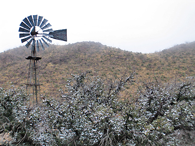 Organ Mountains - Windmill