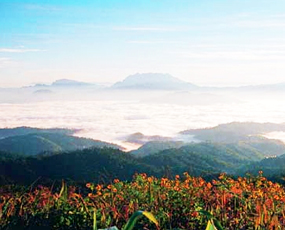 Huai Nam Dang National Park of Thailand Sea of Mist View