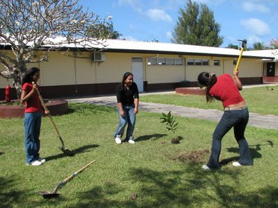 Hopwood Students Planting Trees