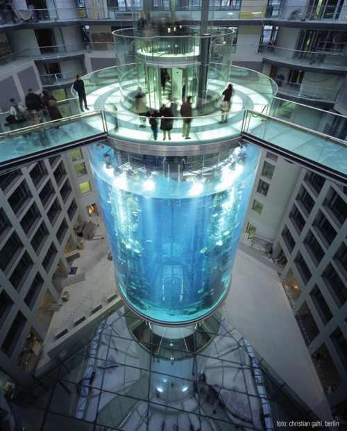 Largest Aquarium In The World Damn Cool Pictures