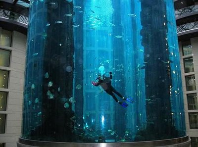 Largest Aquarium In The World Damn Cool Pictures