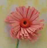 fringed flower quilling