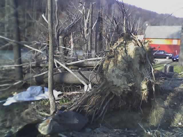 Tornado Damage Near Hawthorne, NY From Last July 12, 2006