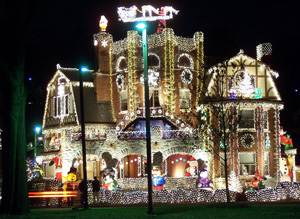 photo of Christmas lights on the Arborway, Jamaica Plain