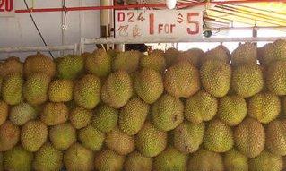 vários durians expostos num mercadinho para venda