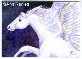 Pegasus ACEO by Ann Ranlett