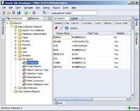 SQL Developer 1.0 EMP properties