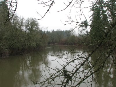 Under the sky sw tualatin river wildlife refuge winter for Tualatin river fishing
