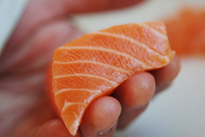Salmon Makes For A Good Snack Investment Banking Blog