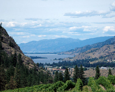 okanagan falls guys Royal lepage has complete real estate listings for okanagan falls just click on  any listing below to view complete details, photos, tours and more read more.