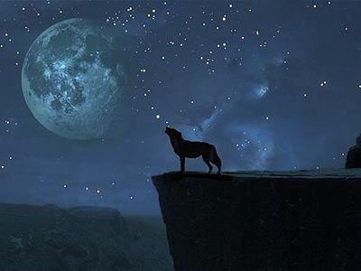 POEMAS SIDERALES ( Sol, Luna, Estrellas, Tierra, Naturaleza, Galaxias...) - Página 24 115