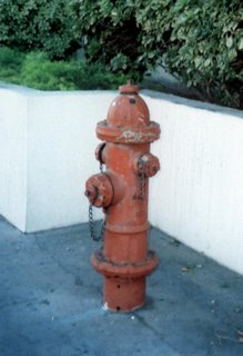 Fire Hydrant in Las Vegas, Nevada