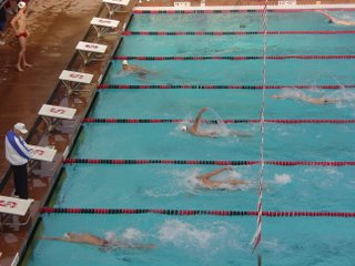 200 back finish