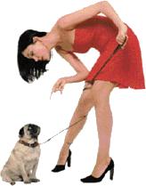 ¿Se llevan los perros madrileños reprimendas de sus dueños; o son ellos quienes les animan a 'soltar lastre'?