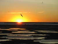 Peninsula Valdes: Sonnenuntergang