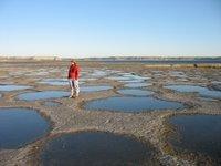 Peninsula Valdes: Am Meer