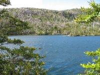 Laguna Alerce
