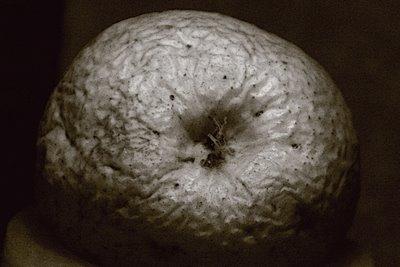 photo d'une pomme toute ridée, an apple, photo dominique houcmant, goldo graphisme