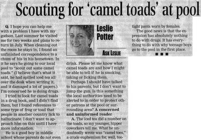 camel toads