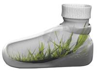 bubble shoe