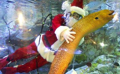 Santa Claus in an aquarium