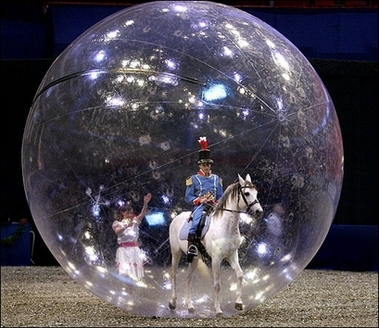 Horse riding inside a giant plastic bubble
