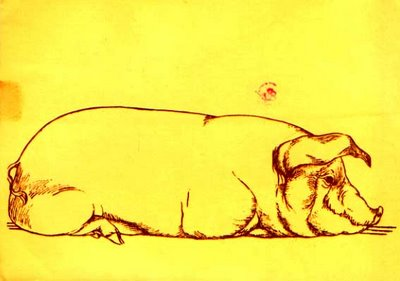 Laurence Gold postcard front - drawing of pig by Speed Gold