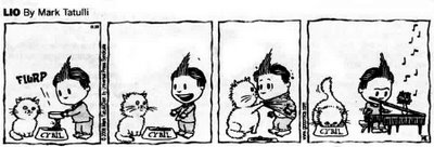Lio a comic strip by Mark Tatulli