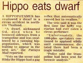 Dwarf got pwned.